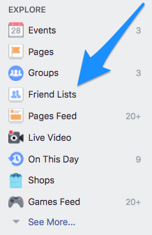 Facebook 'Friends List' in the Facebook sidebar