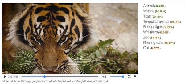 Google video item tags