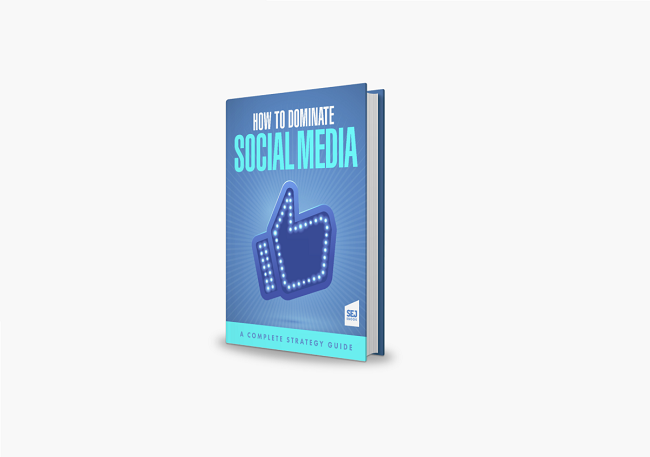 How to dominate social media book cover
