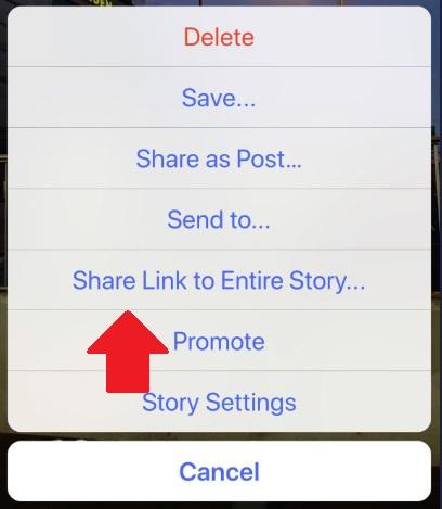 Instagram Stories share option
