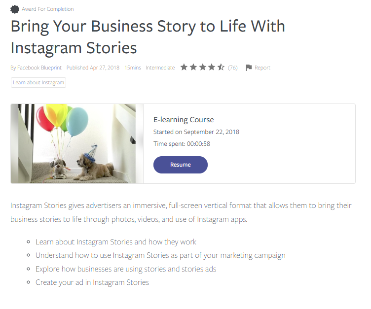 A screenshot of the Instagram Stories course overview