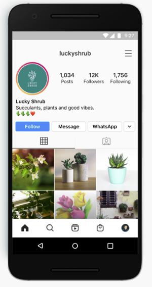 Instagram WhatsApp messaging