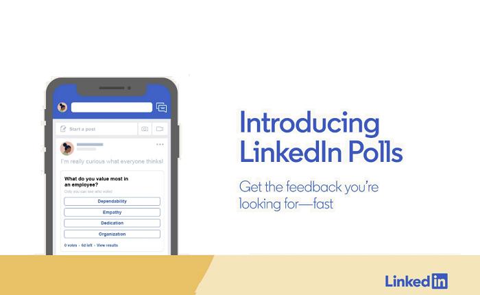 LinkedIn polls