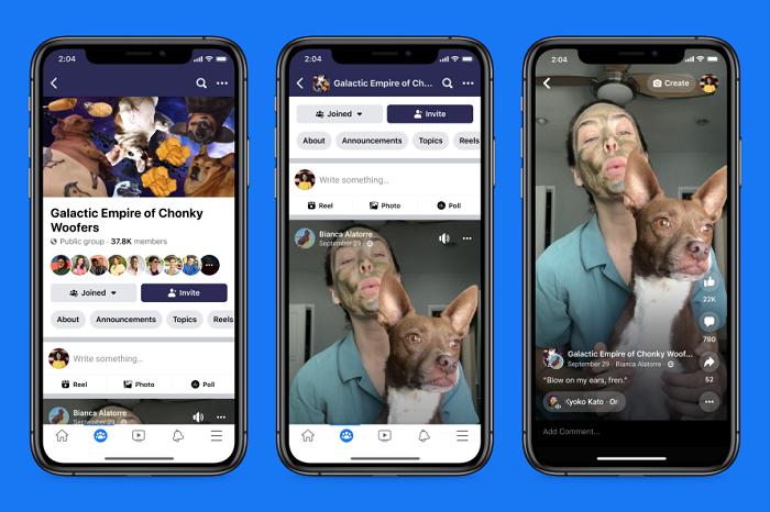 Facebook Roles in groups
