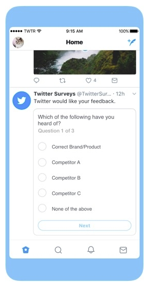 Twitter ad survey example