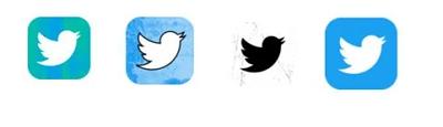 Twitter icon test